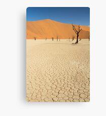 Sossusvlei Namibia Canvas Print