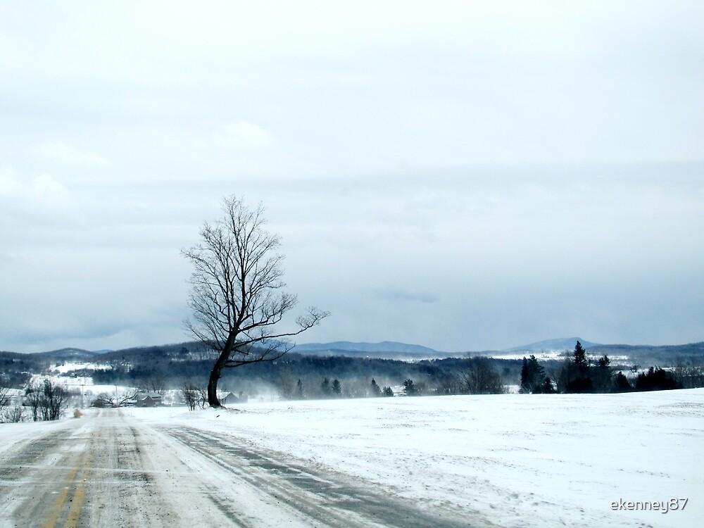 Winter Whisp by ekenney87