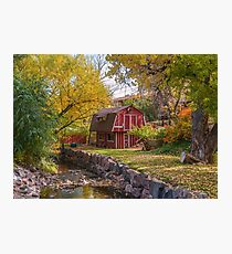 Neighborhood Photographic Print