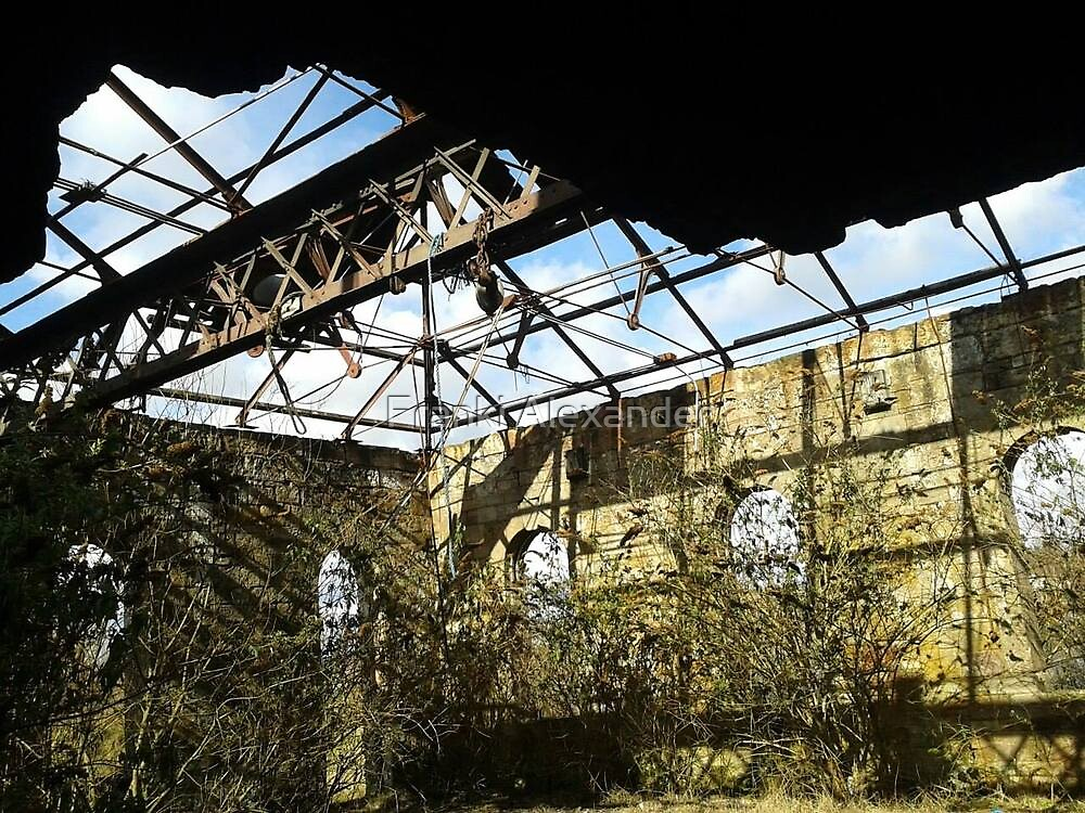 Abandoned structure (2) by Franki Alexander