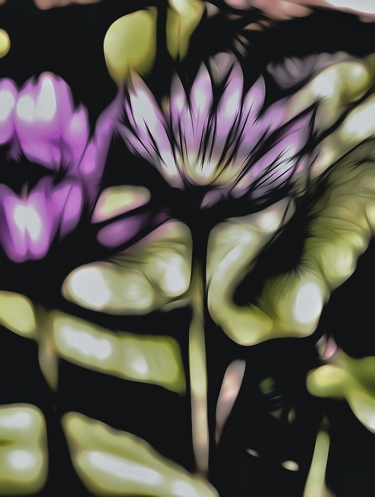 Funky lily by DerekEntwistle