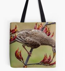 Australian Wattle Bird Feeding. Tote Bag