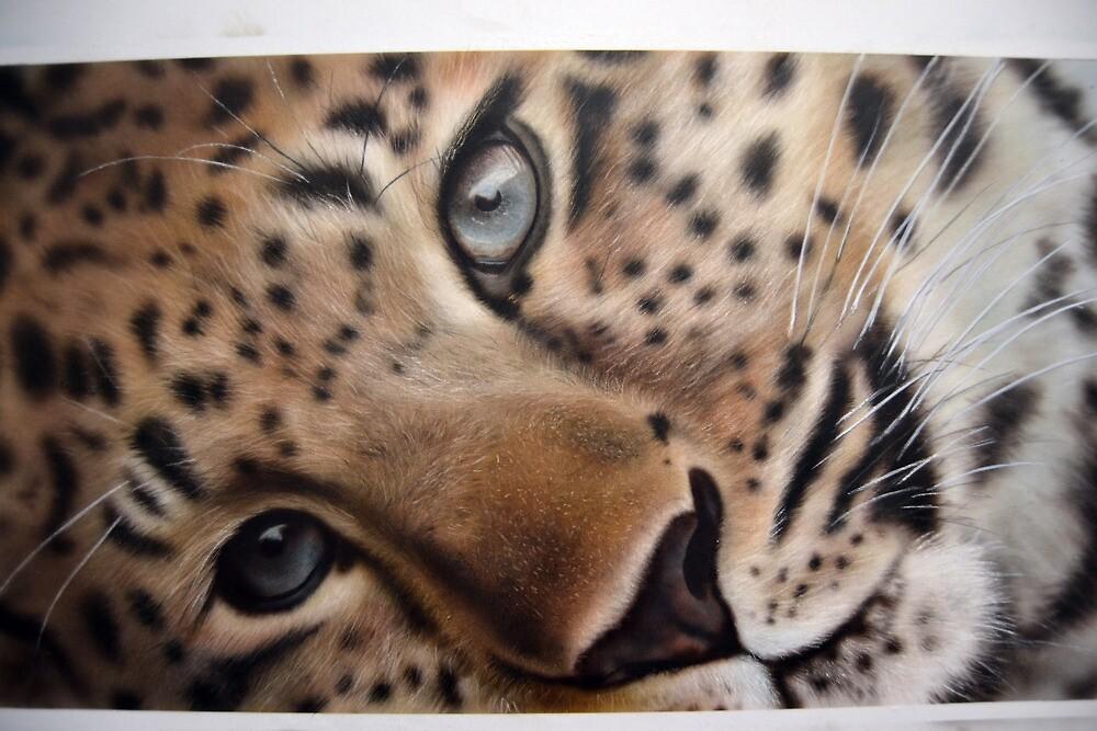 Leopard by juccu