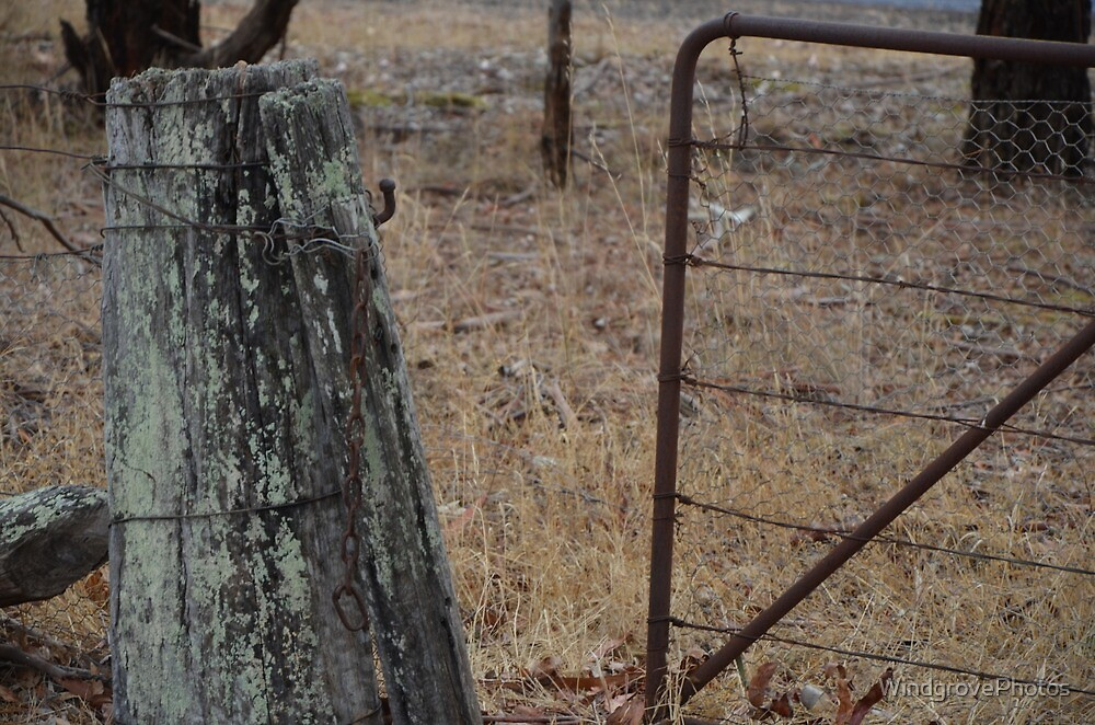 The Gate by WindgrovePhotos