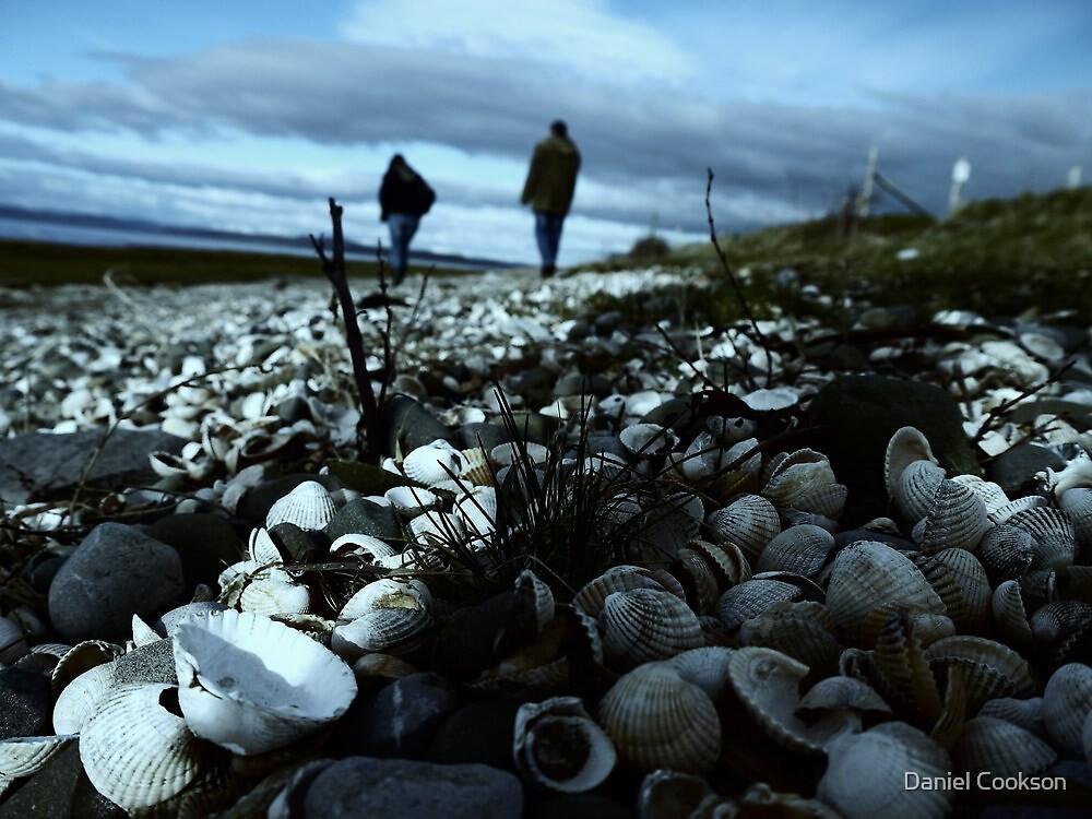 A walk on the beach by Daniel Cookson