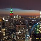 New York City by bryaniceman