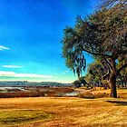 Dataw, South Carolina by fauselr