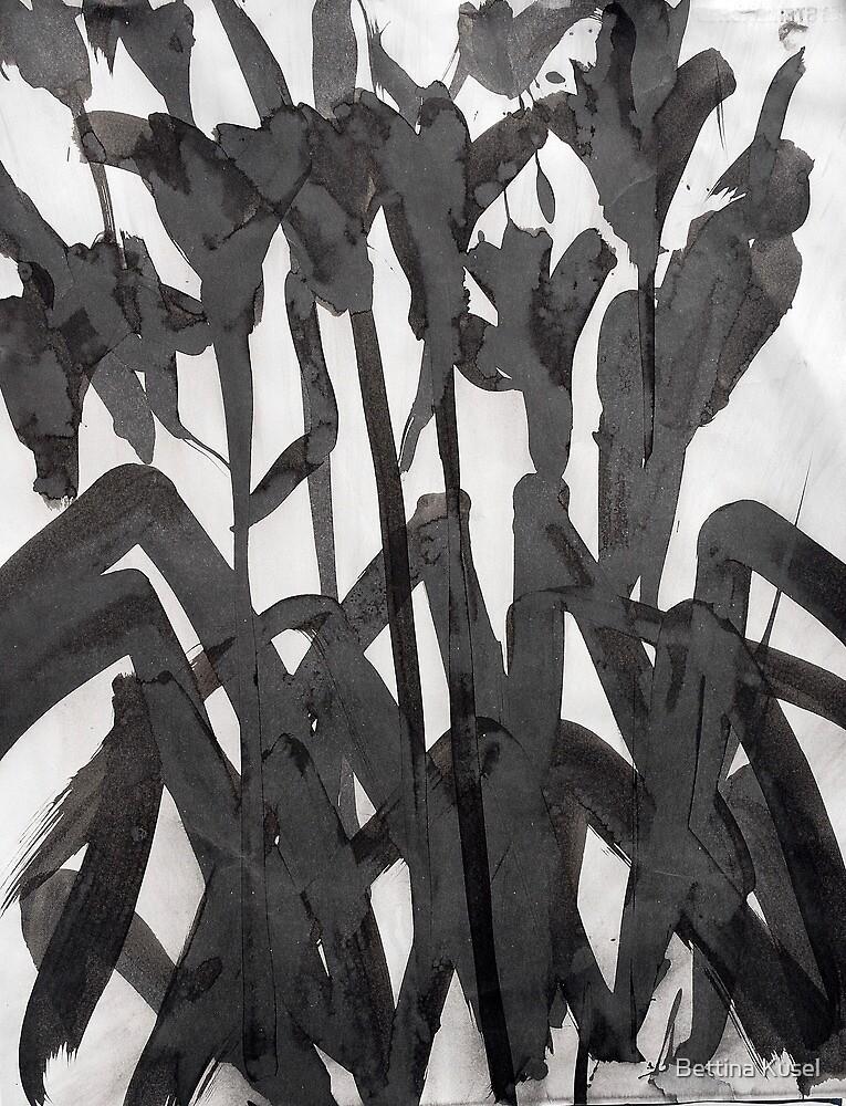 dark lilies by Bettina Kusel