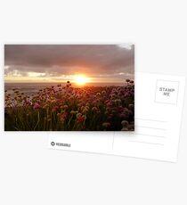3230 Postcards