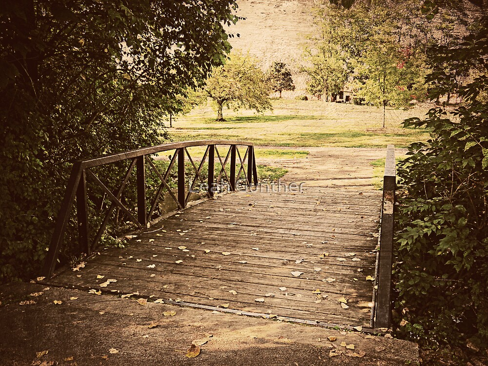 Bridge to Nature by Leah Gunther