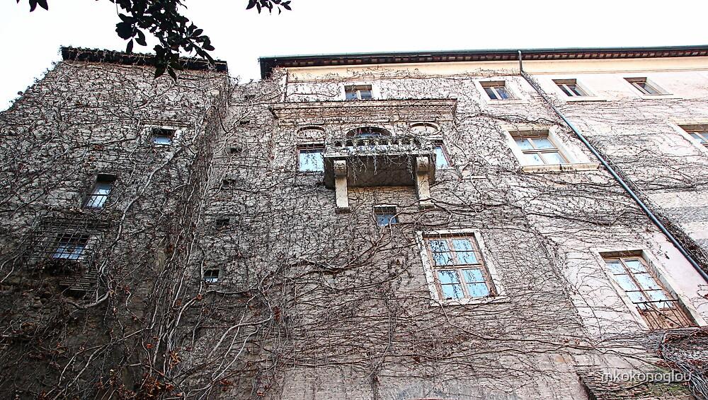the house by mkokonoglou