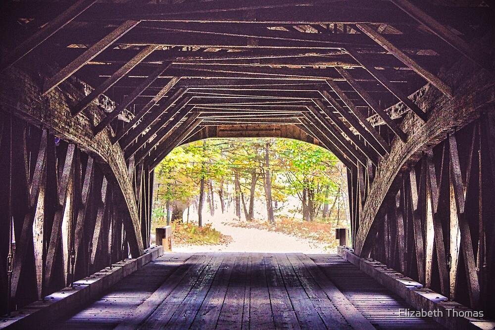 Bridge to a View, Hemlock Bridge, Fryeburg, Maine by Elizabeth Thomas