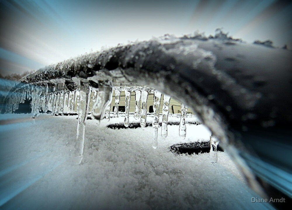 Freezing Rain by Diane Arndt