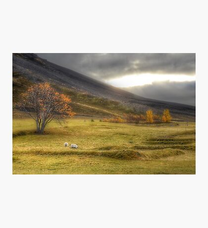 Autumn in Iceland Photographic Print