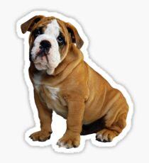 Dog - Bulldog! Sticker