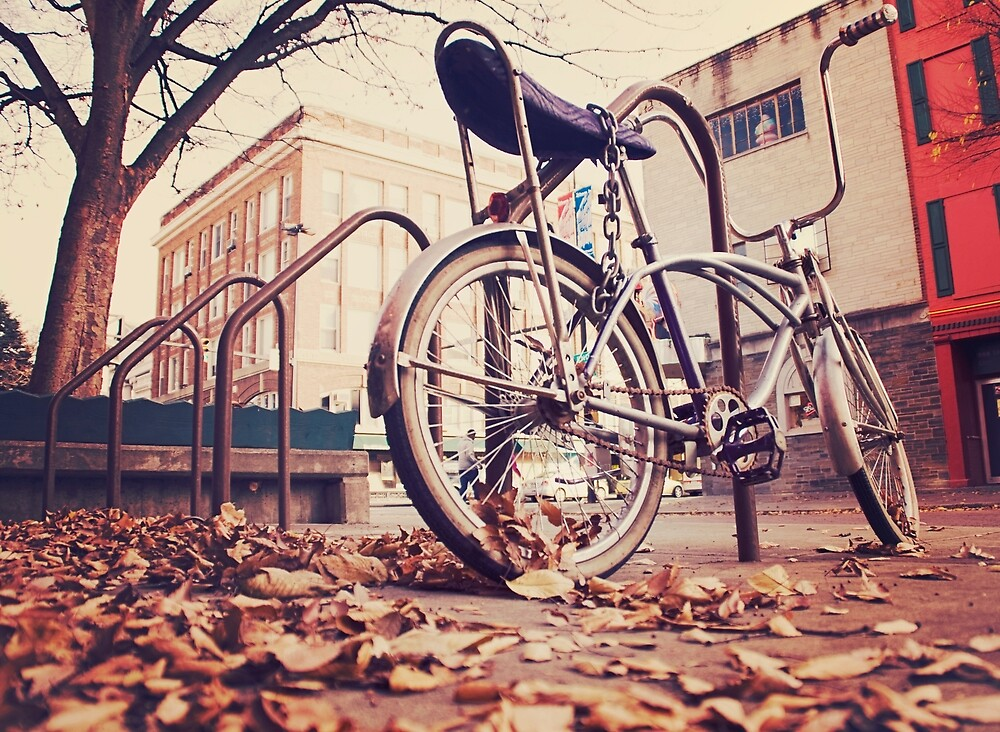 Vintage Bicycle In The Autumn by mragentJ