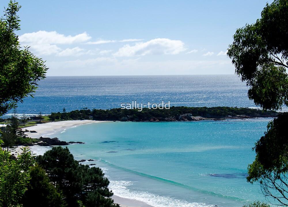Boat Harbour Beach 2 , Tasmania Australia by sally-todd