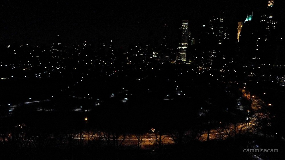 Central Park at Midnight by cammisacam