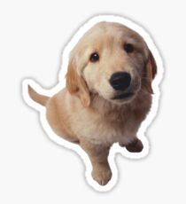 Puppy! Sticker