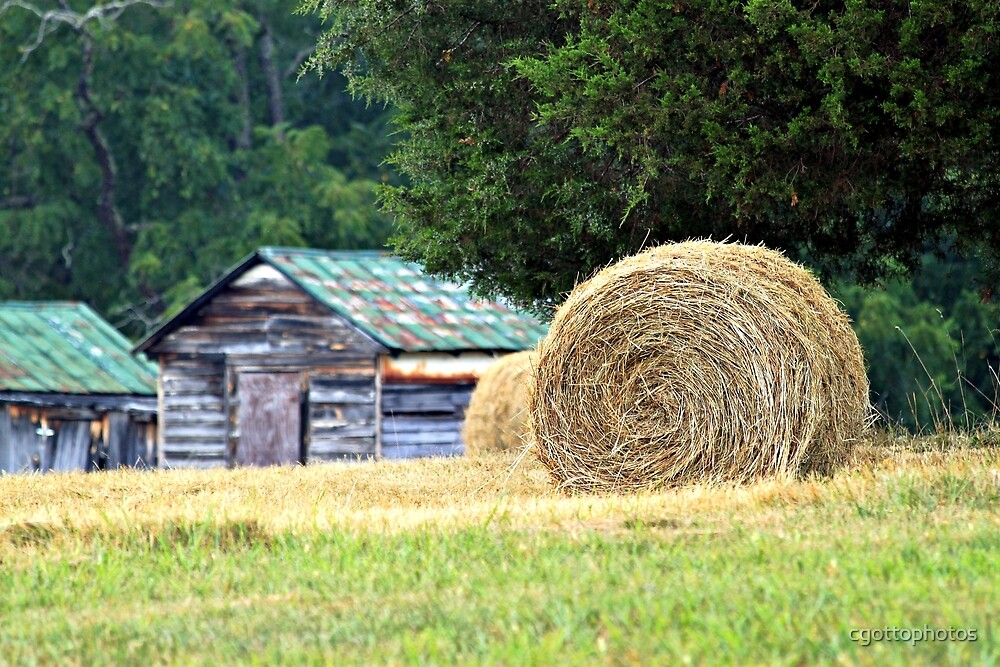 Average day in the country  by cgottophotos