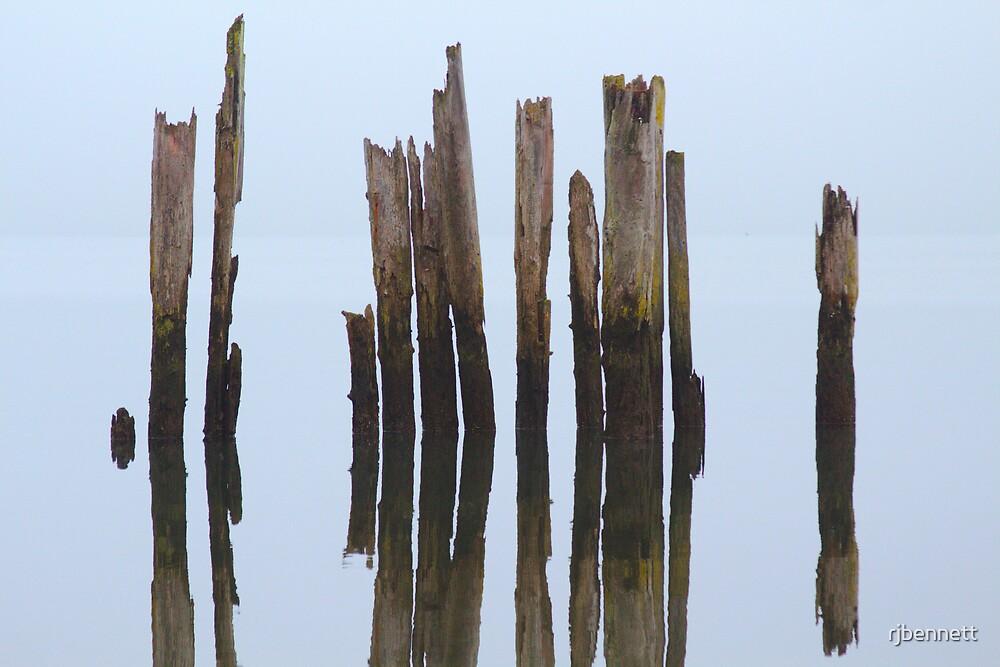 Reflecting Fog by rjbennett