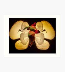 Light butterfly 2 Art Print