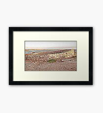 Blowhole Framed Print