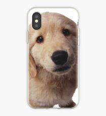 Puppy! iPhone Case