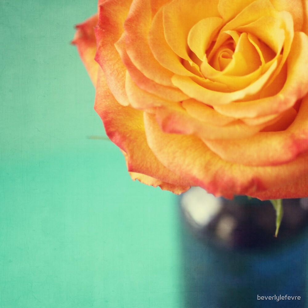 rose by beverlylefevre