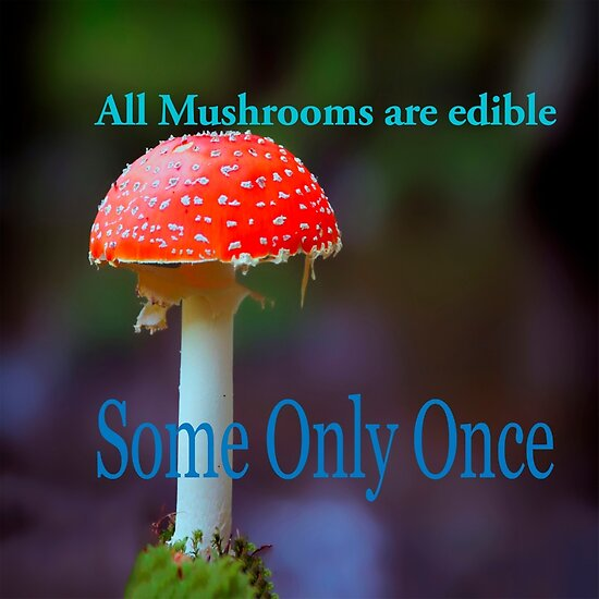 Famous humourous quotes series: All mushrooms are edible. Some only once  by PhotoStock-Isra