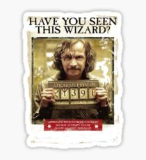 Have You seen This Wizard Sticker