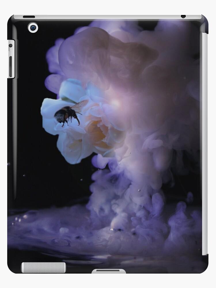 Milky romantic bumblebee rose by Steve Björklund