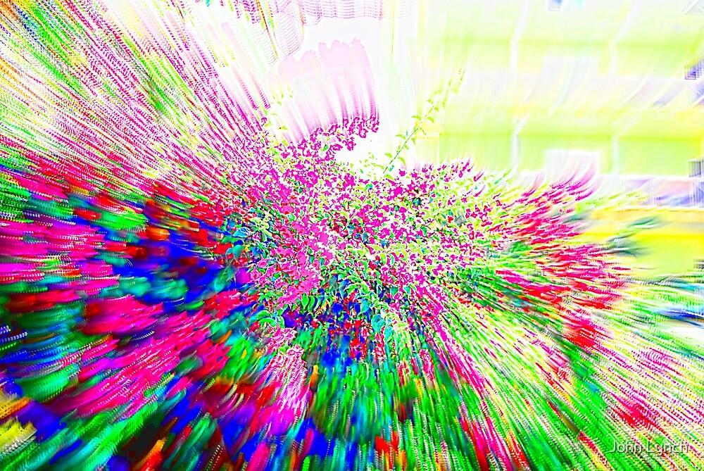 Colour Splash 2 by John Lynch