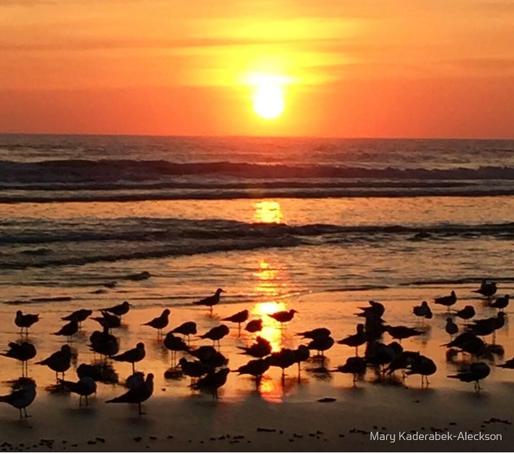 Sunrise-Daytona Beach Shores by Mary Kaderabek-Aleckson
