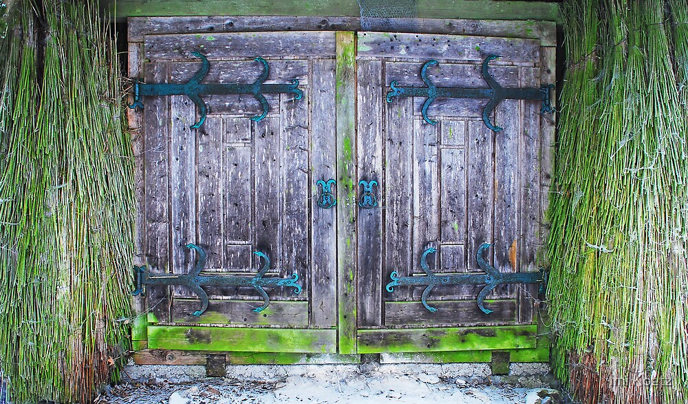 The Entrance of the old Cottage by Imi Koetz
