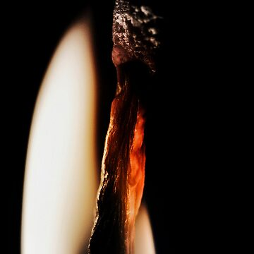 Dying Embers by DBailey