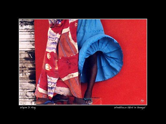 Windblown Skirt Poster by Wayne King