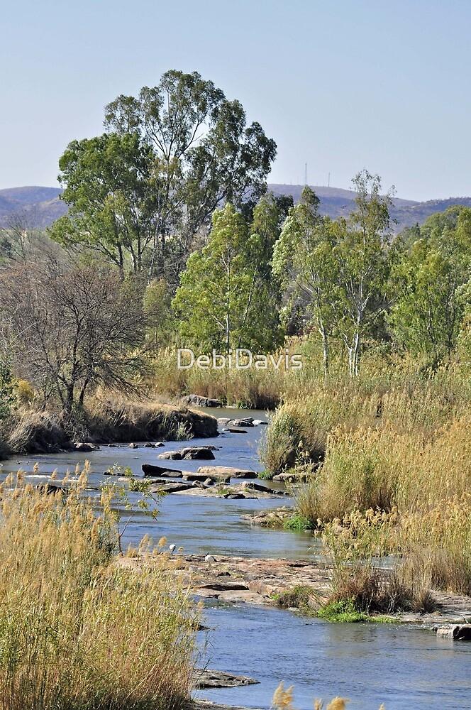River stream by DebiDavis
