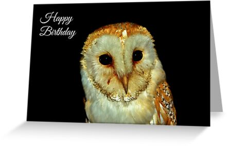 Barn Owl Birthday Card by Paula J James