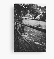 Black & White countryside Canvas Print