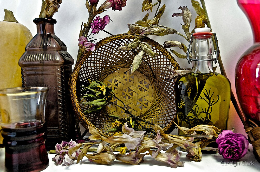 Dried flowers and bottles 1 by Carolyn Clark