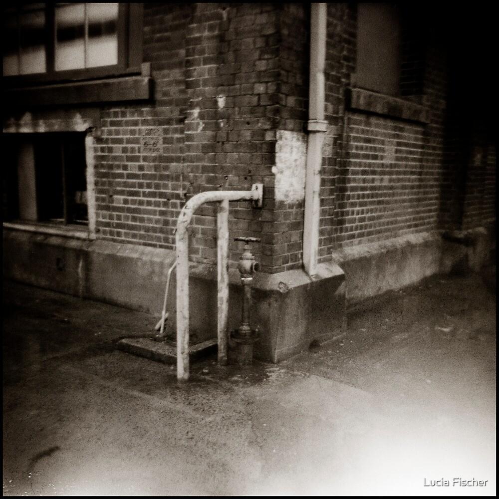 { corner } by Lucia Fischer