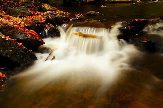 Autumn Water Falls by Gopuraj Soundrarajan