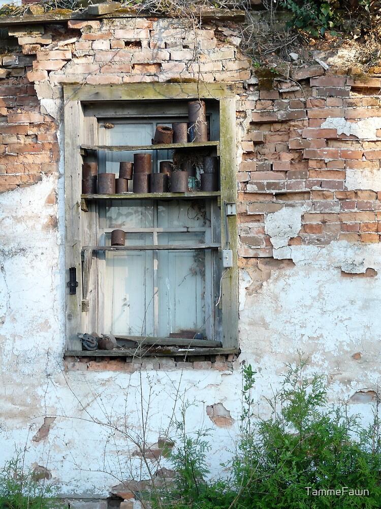 Brick Wall by TammeFawn