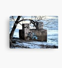 picture of art Canvas Print