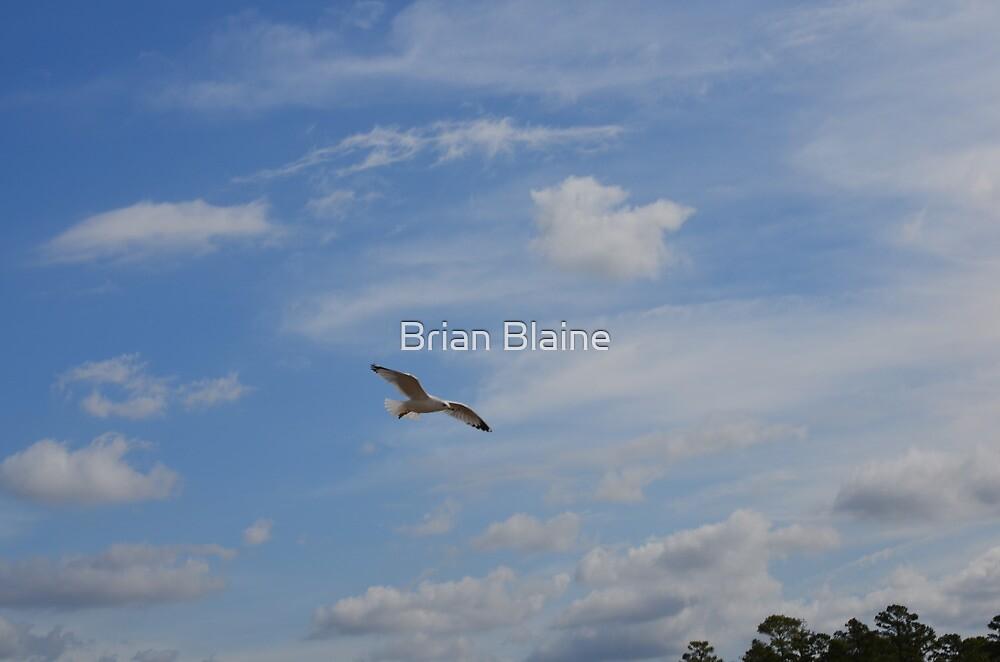 Angel by Brian Blaine