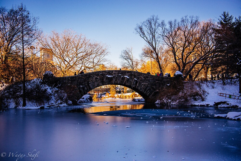 Gold, Behind the Bridge. by photog007