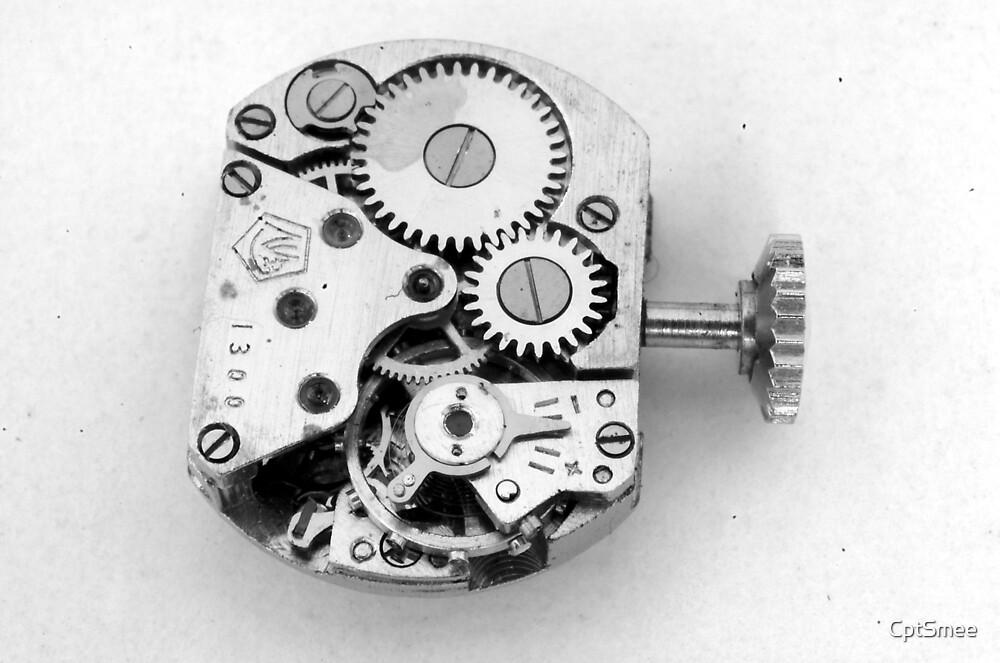 Clockwork - Macroview by CptSmee