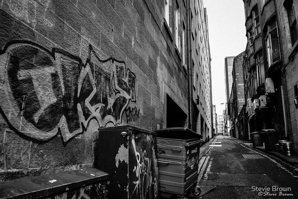 Alleyway Artistry by Stevie B