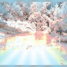 """My favourite spot"" by Norma-jean Morrison"